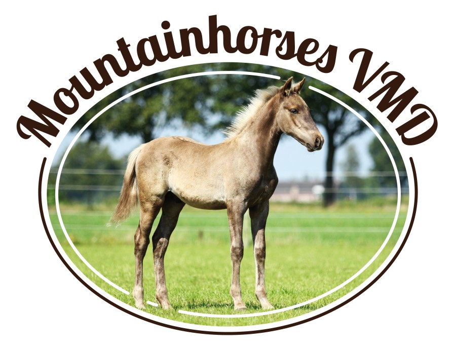 logo Mountainhorses VMD